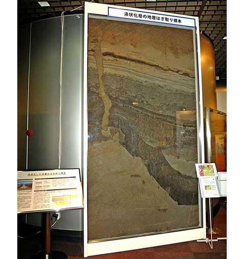 地震による液状化(地層はぎとり標本)