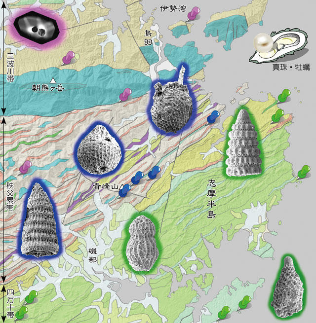 Radiolarian fossils and detrital zircon constraining the depositional age of the Mesozoic in the Shima Peninsula, Mie Prefecture